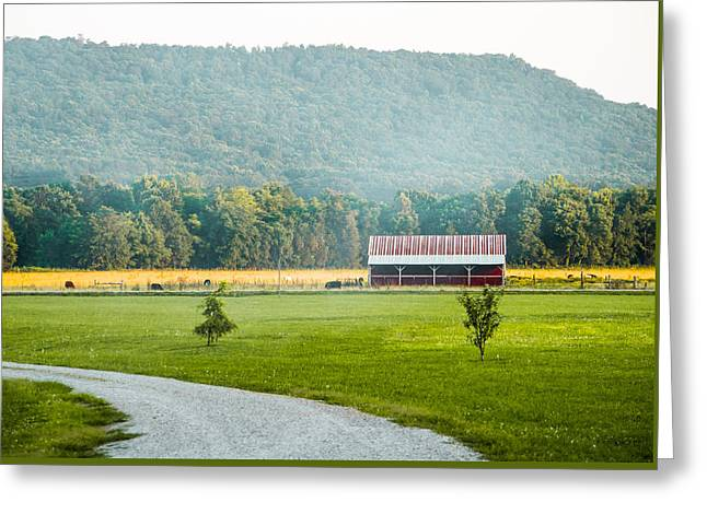 Summer On The Farm Greeting Cards - Red Barn in Hartsel Alabama Greeting Card by Shelby  Young