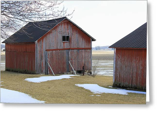 Rural Indiana Greeting Cards - Red Barn in Indiana Greeting Card by Suzanne Gaff