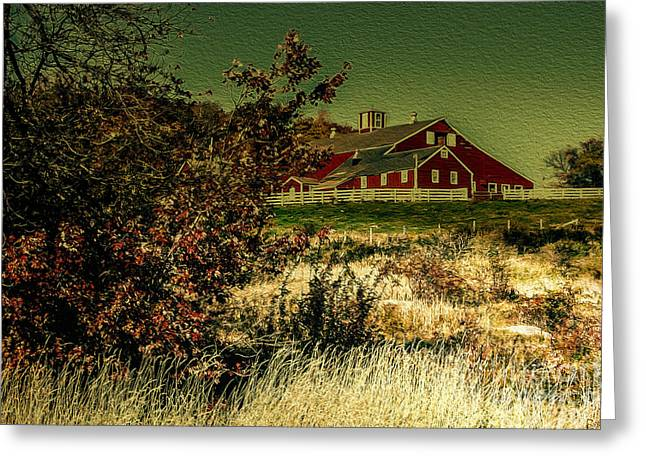 Ecologic Greeting Cards - Red Barn Greeting Card by Mim White