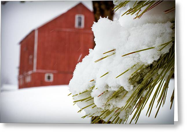 Barn Covered In Snow Greeting Cards - Red Barn Study IV Greeting Card by Tim  Fitzwater