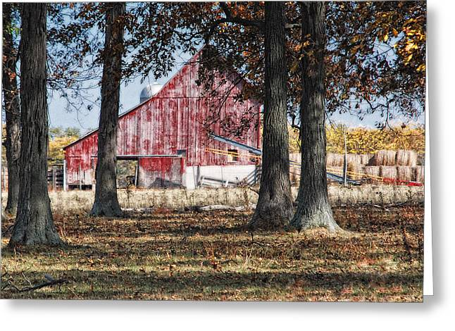 Bale Greeting Cards - Red Barn through The Trees Greeting Card by Pamela Baker