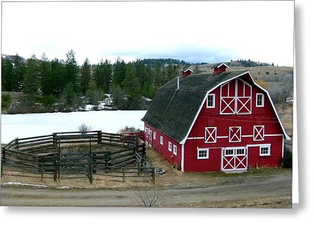 Grazing Snow Greeting Cards - Red Barn Greeting Card by Will Borden