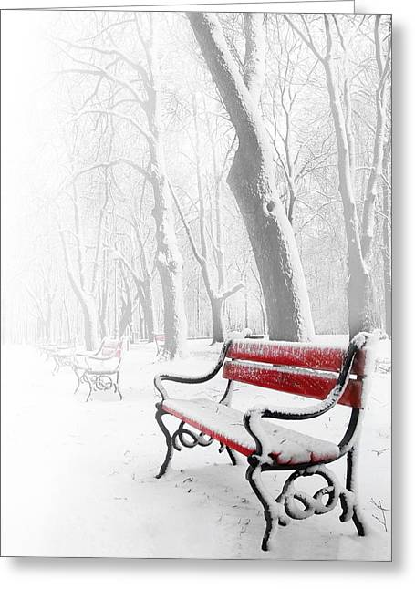 Snow White Greeting Cards - Red bench in the snow Greeting Card by  Jaroslaw Grudzinski
