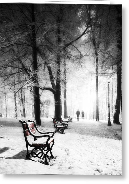 Snowy Night Greeting Cards - Red benches in a park Greeting Card by Jaroslaw Grudzinski