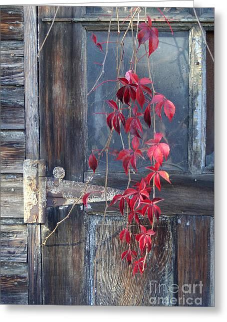 Painted Wood Pastels Greeting Cards - Red Greeting Card by Bernadette Kazmarski