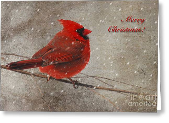 Red Bird In Snow Christmas Card Greeting Card by Lois Bryan