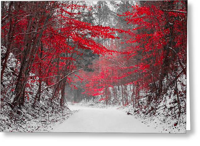 Red Blossoms Horizontal Greeting Card by Parker Cunningham
