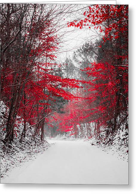 Red Blossoms  Greeting Card by Parker Cunningham