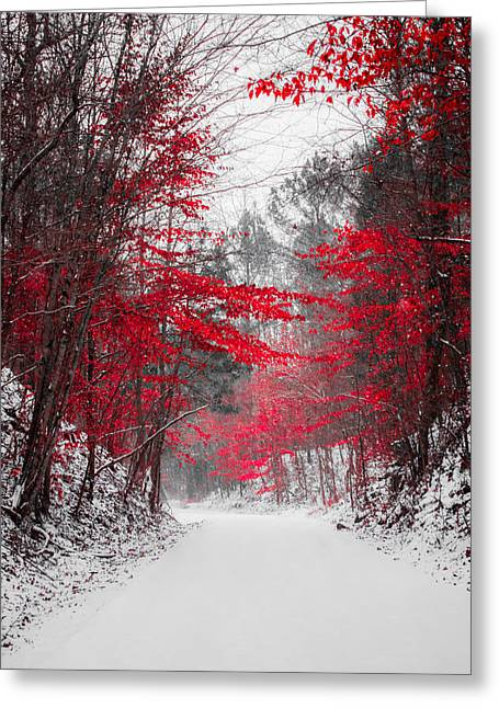 Autumn Landscape Photographs Greeting Cards - Red Blossoms  Greeting Card by Parker Cunningham