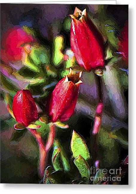 Pinks And Purple Petals Photographs Greeting Cards - Red Buds Greeting Card by Rich Governali