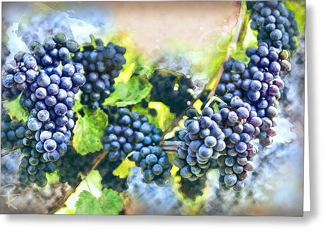 Pinot Noir Digital Greeting Cards - Red bunch of grapes in the vineyard Greeting Card by Catherine King