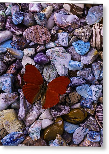 Colored Stones Greeting Cards - Red Butterfly On Colored Stones Greeting Card by Garry Gay