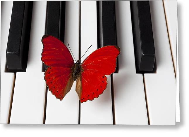 Insect Greeting Cards - Red Butterfly On Piano Keys Greeting Card by Garry Gay