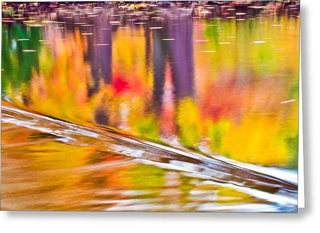 Red Cedar River At Msu Pano  Greeting Card by John McGraw