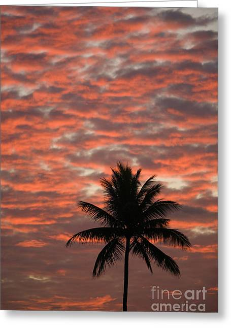 Amazing Sunset Greeting Cards - Red Clouded Sky Greeting Card by Ron Dahlquist - Printscapes