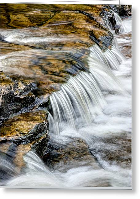 Dolly Sods Wilderness Greeting Cards - Red Creek Detail Greeting Card by Matt Hammerstein