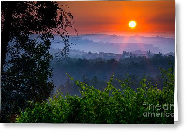 Red Dawn Greeting Card by Inge Johnsson