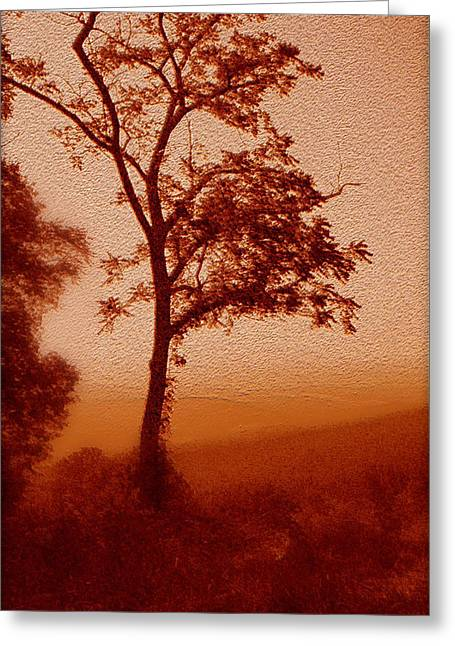 Scenic Drive Digital Greeting Cards - Red Dawn Greeting Card by Linda Sannuti