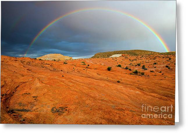 Red Desert Rain Greeting Card by Mike Dawson