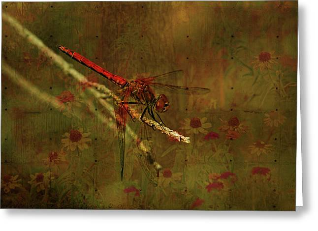 Olive Green Mixed Media Greeting Cards - Red Dragonfly Dining Greeting Card by Bonnie Bruno