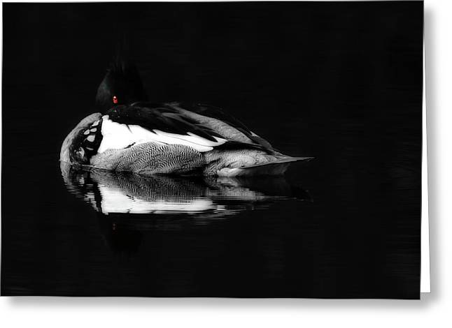 Red Eye Greeting Card by Lori Deiter