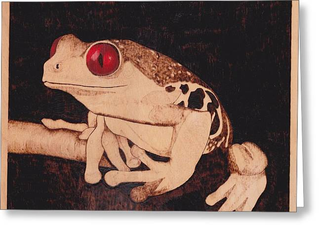 Woodburn Pyrography Greeting Cards - Red Eyed Tree Frog Greeting Card by Marsha Wilson
