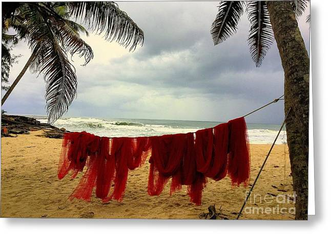 Best Seller Greeting Cards - Red Fishing Net Greeting Card by Noa Yerushalmi