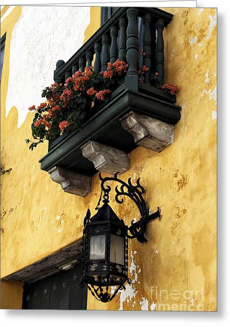 Red Flowers In Cartagena Greeting Card by John Rizzuto