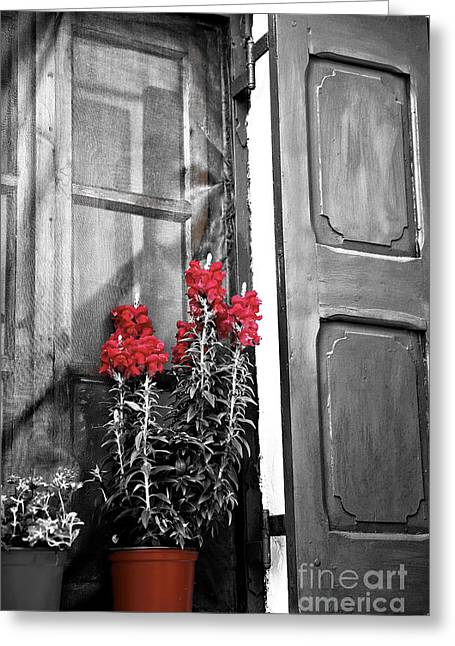 Unique Art Greeting Cards - Red Flowers in the Window Fusion Greeting Card by John Rizzuto