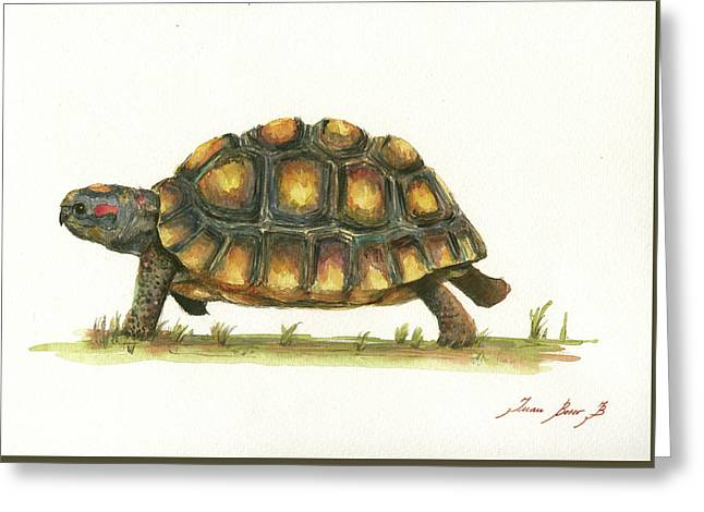 Red Footed Tortoise  Greeting Card by Juan Bosco