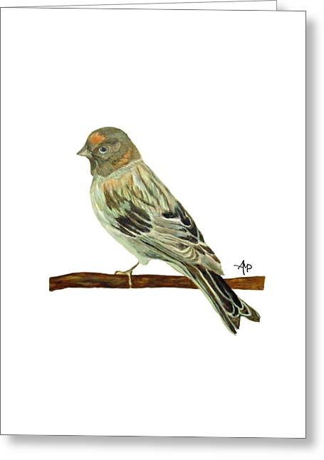 Passerines Greeting Cards - Red-fronted serin Greeting Card by Angeles M Pomata