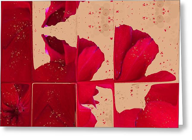 Red Geraniums Greeting Cards - Red Geranium Fragments Greeting Card by Judi and Don Hall