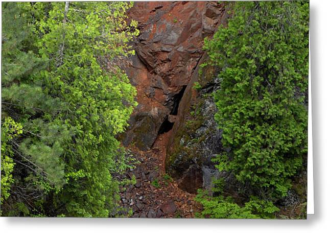 Red Gorge with Cedar Trees Greeting Card by Cynthia Dickinson