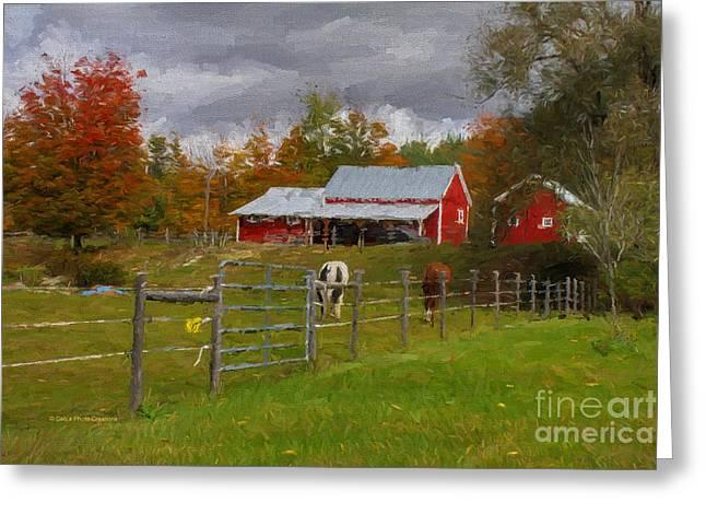 Red Horse Barn Greeting Card by Deborah Benoit