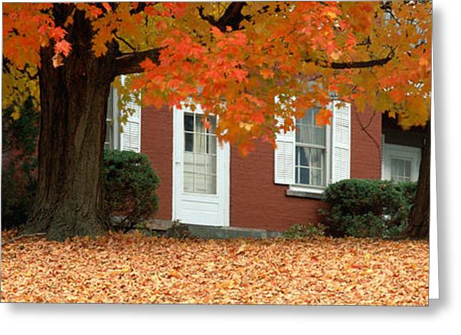 Small Towns Greeting Cards - Red House And Maple Trees Along Route Greeting Card by Panoramic Images