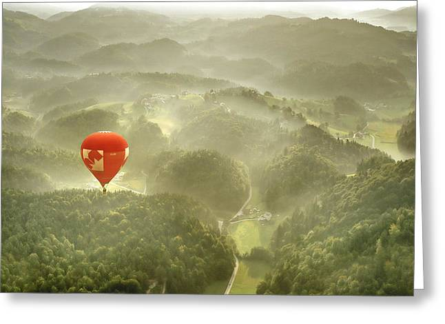 Flying Greeting Cards - Red In October Greeting Card by Matjaz Cater