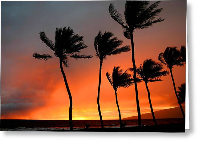 ; Maui Greeting Cards - Red Maui sunset Hawaii Greeting Card by Pierre Leclerc Photography