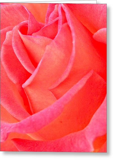 Photographs Digital Art Greeting Cards - Red No More Greeting Card by Gwyn Newcombe