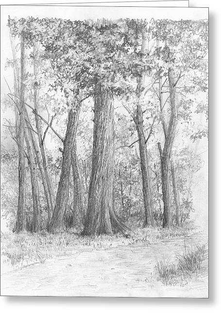 Jim Hubbard Greeting Cards - Red Oak Greeting Card by Jim Hubbard