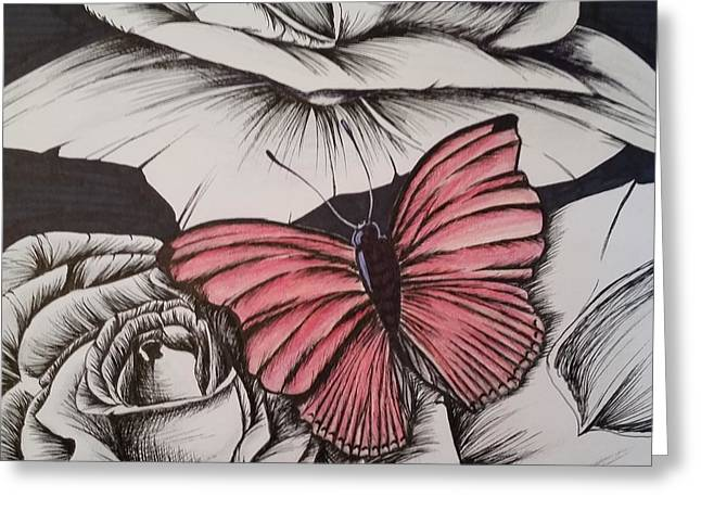 Ink Drawing Greeting Cards - Red on white Greeting Card by Candice Smith