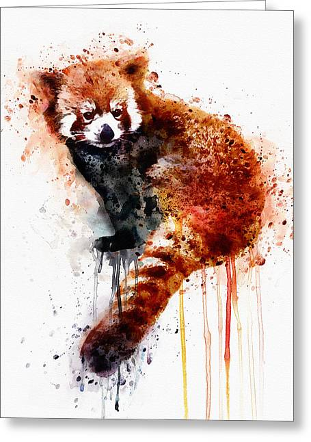 Shower Curtain Greeting Cards - Red Panda Greeting Card by Marian Voicu