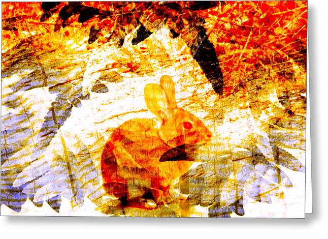 Red Rabbit Greeting Card by Robert Ball