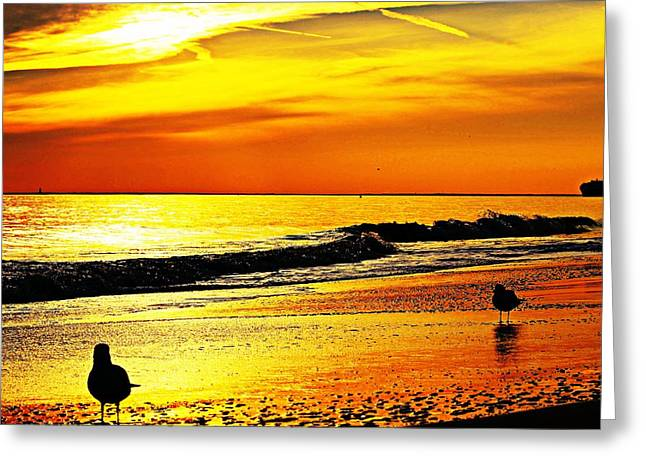Reflecting Water Greeting Cards - Red Reflection On The Beach Greeting Card by Kathy Henderson