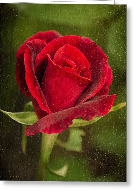 Christina Digital Art Greeting Cards - Red Rose Behind Wet Glass Greeting Card by Christina Rollo