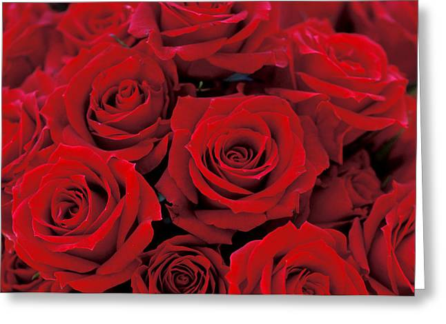 Red Photographs Photographs Greeting Cards - Red Rose Bouquet Greeting Card by Kathy Yates