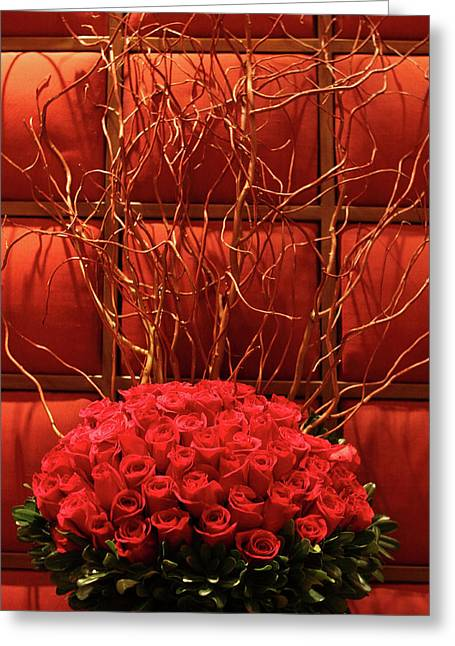 Cushion Greeting Cards - Red Rose Display Close Up Greeting Card by Linda Phelps