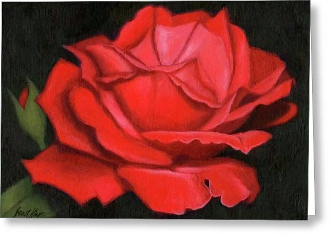 Red Rose Greeting Card by Janet King