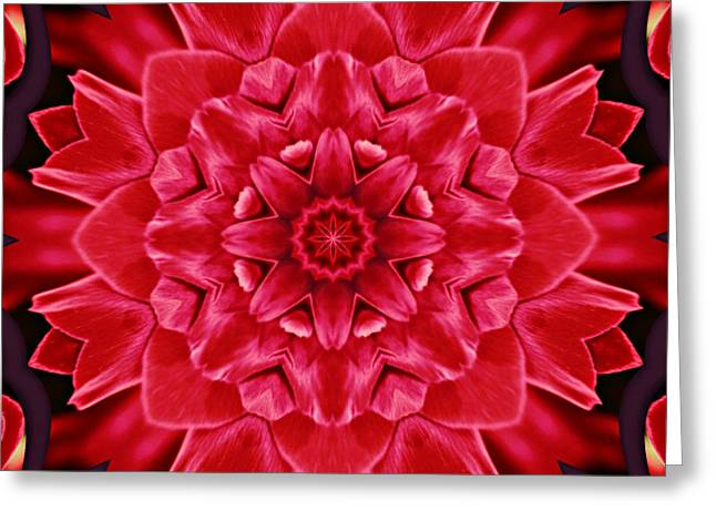 Kaleidoscope Effect Greeting Cards - Red Rose Kaleidoscope Greeting Card by Cathie Tyler