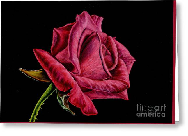 Red Rose On Black Greeting Card by Sarah Batalka