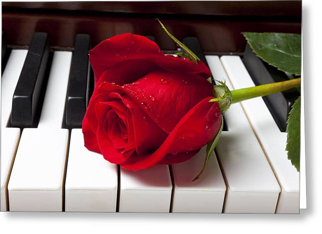Floral Photographs Greeting Cards - Red rose on piano keys Greeting Card by Garry Gay